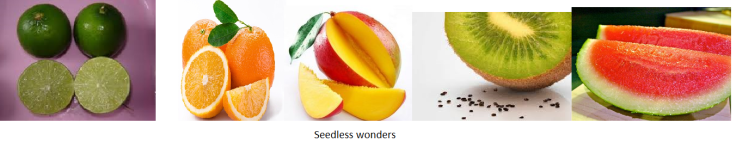 seedless fruits